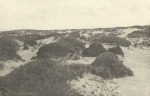 Massart (1908, foto 033)