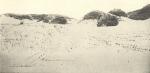 Massart (1908, foto 035)