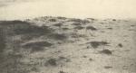 Massart (1908, foto 049)
