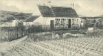 Massart (1908, foto 060)