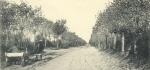 Massart (1908, foto 061)