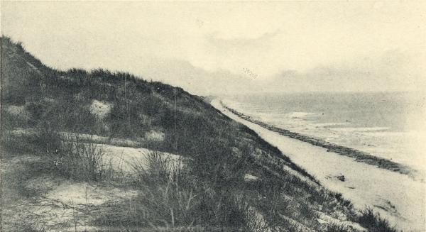 Massart (1908, foto 066)