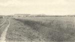 Massart (1908, foto 122)