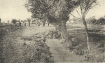 Massart (1908, foto 141)