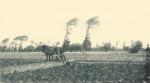Massart (1908, foto 155)