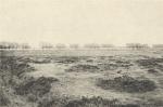 Massart (1908, foto 163)