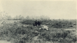 Massart (1908, foto 169)