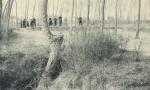 Massart (1908, foto 175)