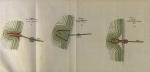De Maere-Limnander (1875, pl. 2)