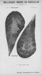 Bucquoy <i>et al.</i> (1887-1898, pl. 24)