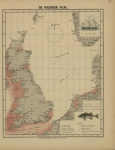 <B>Olsen, O.T.</B> (1883). The piscatorial atlas of the North Sea, English and St. George's Channels, illustrating the fishing ports, boats, gear, species of fish (how, where, and when caught), and other information concerning fish and fisheries. Taylor a