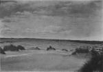 Massart, J. (1913). La cinquantième herborisation générale de la Société royale de Botanique de Belgique sur le littoral belge Bull. Soc. Roy. Bot. Belg. 51(2ième sér.)(1 (Vol. jubilaire)): 69-185, 41 plates