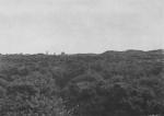 Massart (1913, foto 13)