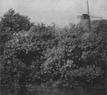 Massart (1913, foto 34)
