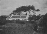 Massart (1913, foto 36)