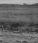 Massart, J. (1913). Pour la protection de la nature en Belgique Bull. Soc. Roy. Bot. Belg. 51(2ième sér.)(1 (Vol. jubilaire)): 1-308, map., ill.