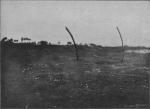 Massart (1913, foto 66)