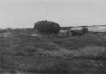 Wery (1908, foto 18)
