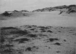 Wery (1908, foto 23)