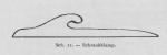 Bly (1902, fig. 11)