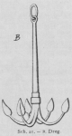 Bly (1902, fig. 21)