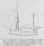 Bly (1902, fig. 28)