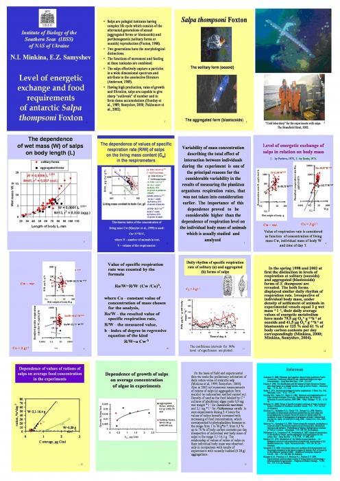 Level of energetic exchange and food requirements of Antarctic Salpa thompsoni Foxton