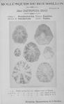 Bucquoy, E.; Dautzenberg, Ph.; Dollfus, G. (1882). Les Mollusques marins du Roussillon: 1. Gastropodes avec atlas de 66 planches photographiées d'après nature. J.-B. Baillière & Fils: Paris. 570, 66 plates pp.