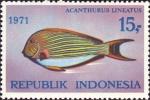 Acanthurus lineatus