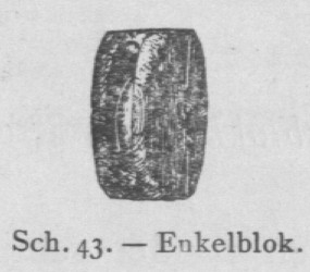 Bly (1902, fig. 43)