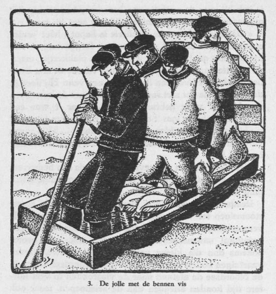 Derolez (1950, fig. 03)