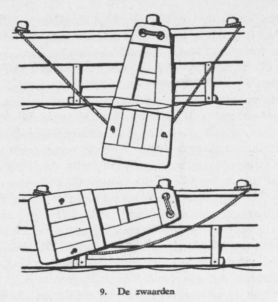 Derolez (1950, fig. 09)