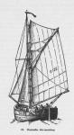 Derolez (1950, fig. 19)