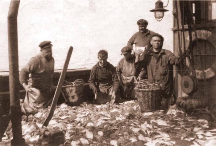 Sorteren van vangst