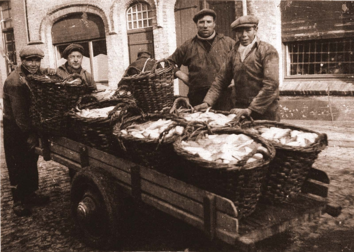 Transport of fish - Transport du poisson - Vistransport