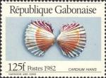 Cardium hians
