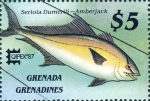Seriola dumerili