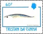 Decapterus longimanus