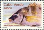 Diplodus fasciatus