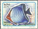 Gonochaetodon larvatus