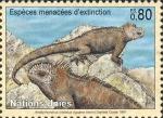 Amblyrhynchus cristatus