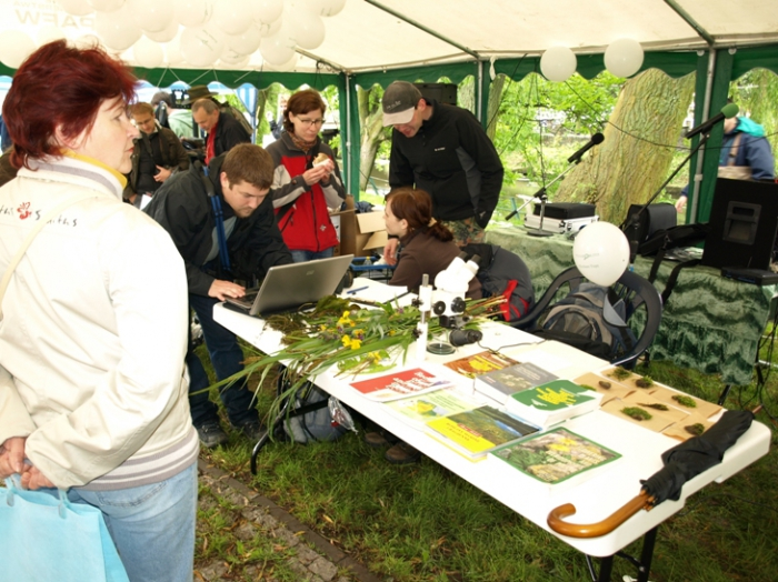 Botanists keying out the different plant species they collected during the BioBlitz