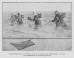 <B>Loontiens, C.</B> (1930). Een eeuw zeevisscherij te Oostende. Hof's Boek- en Steendrukkerij: Oostende. 32 pp.