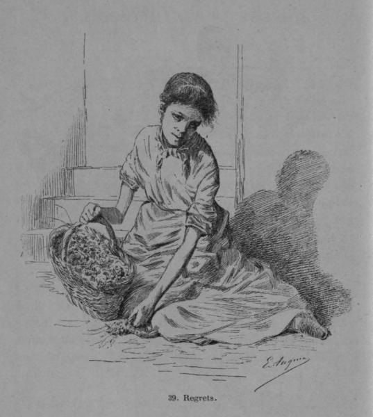 Auguin (1899, fig. 39)