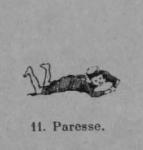 Auguin (1899, fig. 11)