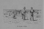 Auguin (1899, fig. 19)