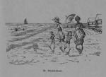 Auguin (1899, fig. 20)