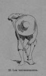 Auguin (1899, fig. 22)