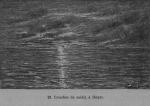 Auguin (1899, fig. 29)