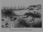 Auguin, E. (1899). Plages belges: 4. De Heyst-sur-Mer à la frontière hollandaise. H. Le Soudier: Paris. 127 pp.